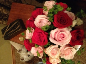 Roses from David
